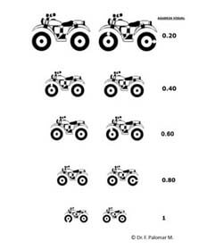 optotipo ruedas rotas de palomar